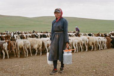 mongolia_00019